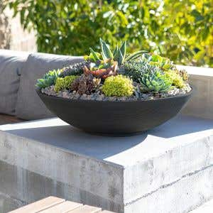 Outdoor Planters - The Lane Bowl