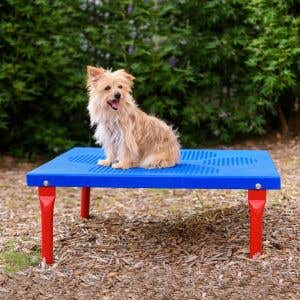 Dog Park Products - Paws Table