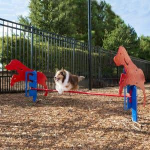 Dog Park Products - Rover Jump